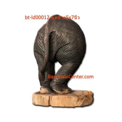ตูดช้าง5x7นิ้ว
