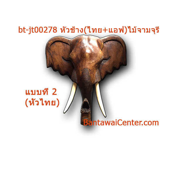 หัวช้าง(ไทย+แอฟ)ไม้จามจุรี10นิ้ว
