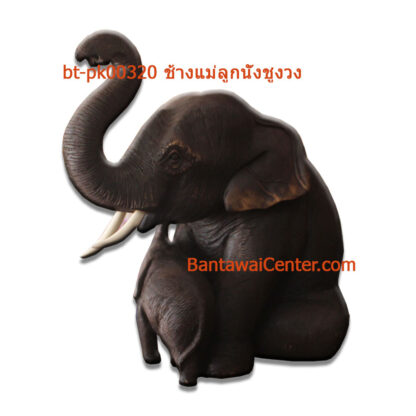 ช้างแม่ลูกนั่งชูงวง